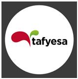 cetea-ico-tafyesa